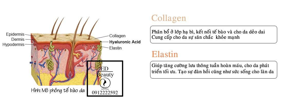 4-cong-dung-khong-the-bo-qua-serum-duong-da-kerastase-32