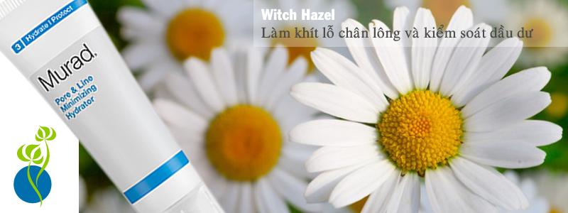 Kem dưỡng khít lỗ chân lông Pore & Line Minimizing Hydrator